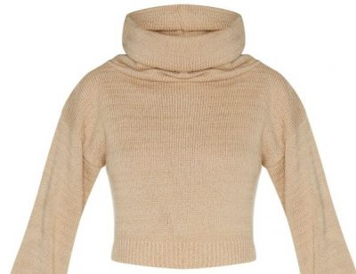 Camel Roll Neck Cropped Sweater