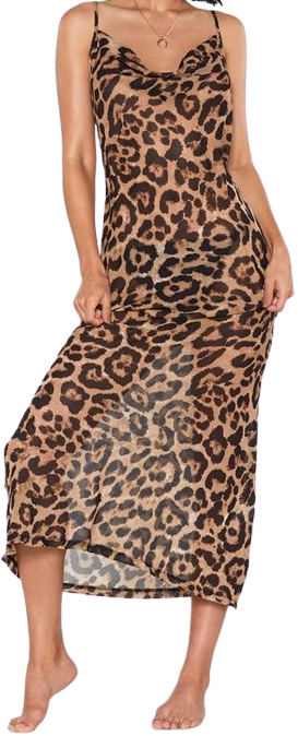 Brown Leopard Print Maxi Dress