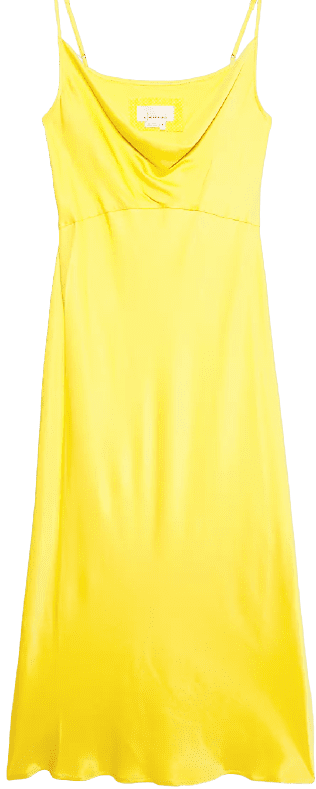 Canary Elyse Bias Slip Dress