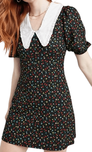 Floral Fit And Flared Dress With Collar-Miss Selfridge