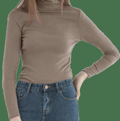 Mocha Turtleneck Slim Long T-Shirt