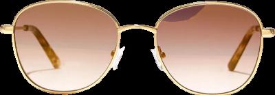 Brown Nelson Sunglasses-Madewell