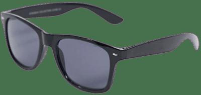Black Classic Wayfare Sunglasses-SVNX