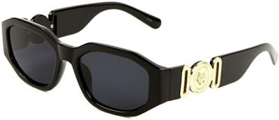 Gold Tiger Head Oval Sunglasses-Dweebzilla