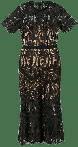 Black Scalloped Stretch-lace Midi Dress