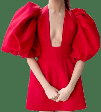 Scarlet Balloon Sleeve Mini Dress