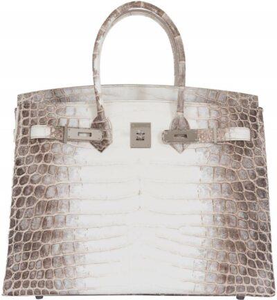 Himalayan Croc Birkin Bag-Hermes