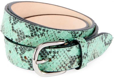 Water Green Zap Python Printed Leather Belt-Isabel Marant